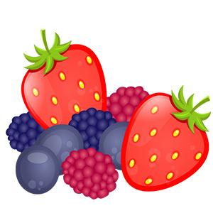 Paleo und Obst - Illustration mit Erdbeeren, Himbeeren, Pflaumen